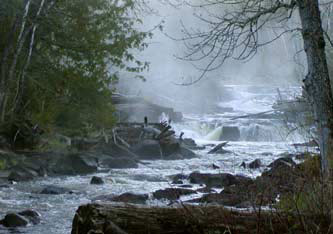 [the arrow river on a misty morning]